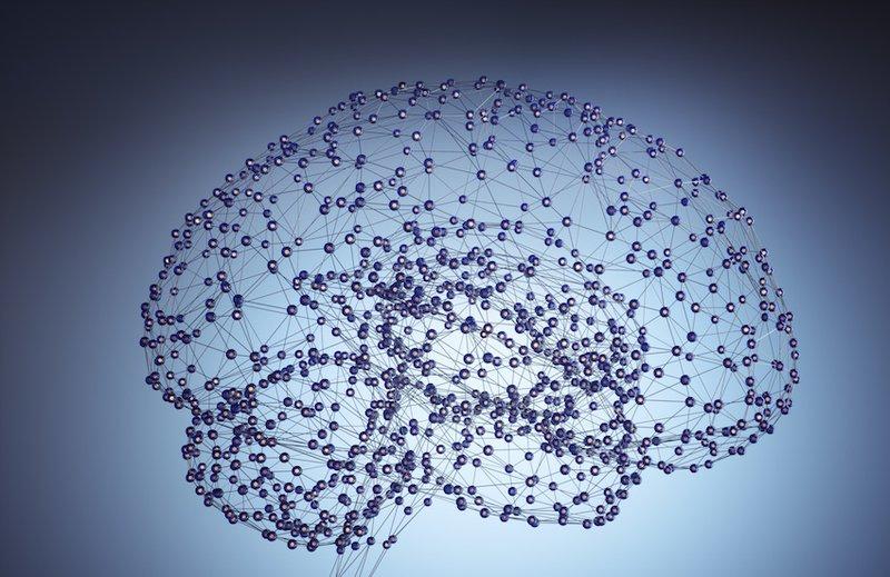 Brain Nodes